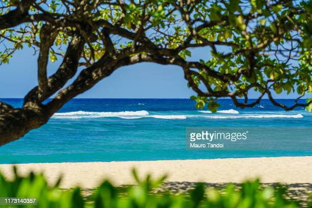 a deserted tropical beach at nusa dua - mauro tandoi stock pictures, royalty-free photos & images