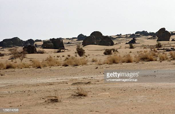 Desertscape Niger Sahelian Landscape SemiAride Land Prone To Drought And Erosion The Name Is Derived From The Arabic Word For Shore