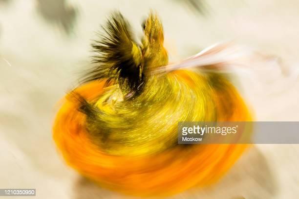 desfile de escolas de samba - samba stock pictures, royalty-free photos & images