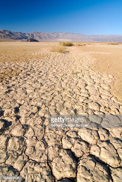 desiccation cracks, arid loam soil at stovepipe wells in death valley national park, california, usa - loam stock photos and pictures