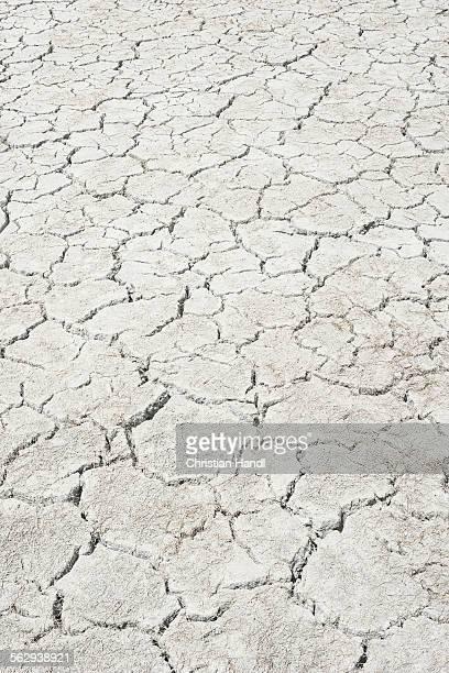 Desiccation cracks, pattern, of a dried up salt lake, Putre, Arica and Parinacota Region, Chile