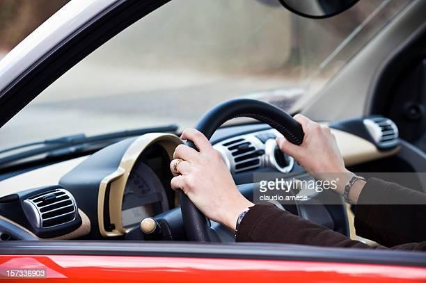 Designated Driver, Color Image