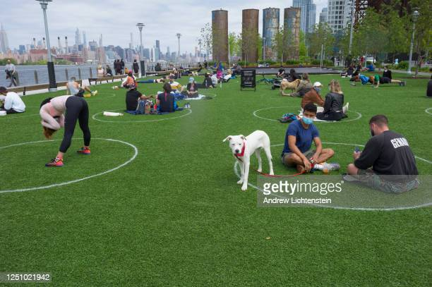 Designated white circles are drawn on the lawn of the often crowded Domino Park to help keep people socially distant during the COVID-19 pandemic on...