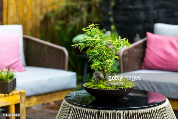 designed space for relax in modern garden - small stock pictures, royalty-free photos & images