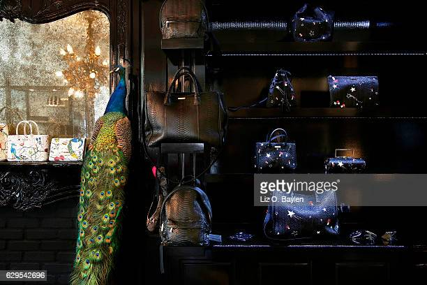 Designer and interior decorator Elisabeth Weinstock is photographed in her boutique for Los Angeles Times on October 19 2016 in Los Angeles...