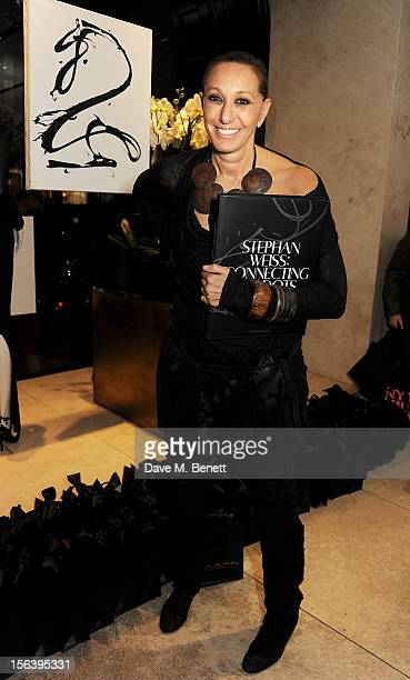 Designer Donna Karan attends the launch of 'Stephan Weiss Connecting The Dots Portrait Of A Man' at Donna Karan London on November 14 2012 in London...