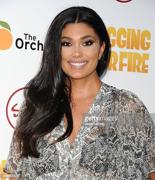Designer Rachel Roy attends the premiere of Digging For Fire at ArcLight Cinemas on August 13 2015 in Hollywood California