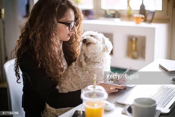 ホームオフィスデザイナーワークで押して続けると彼女の子犬