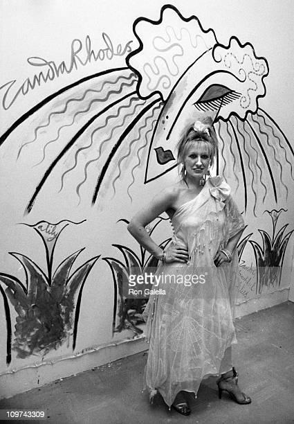 Designer Zandra Rhodes attends Zandra Rhodes Fashion Exhibit on April 29 1981 at the Parson School of Design in New York City