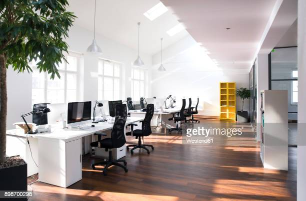 desks with pcs in bright and modern open space office - niemand stock-fotos und bilder