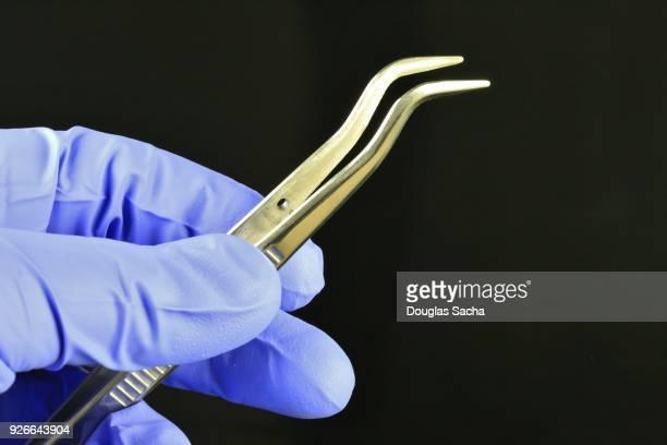 Desntist with extraction tweezers