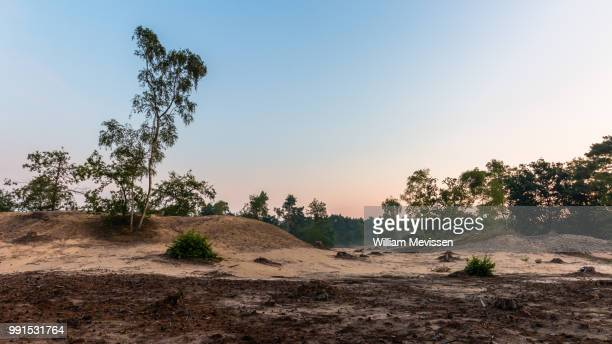 desolate land - william mevissen stock pictures, royalty-free photos & images