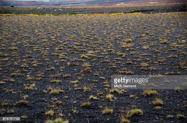 Desolate Landscape in Iceland
