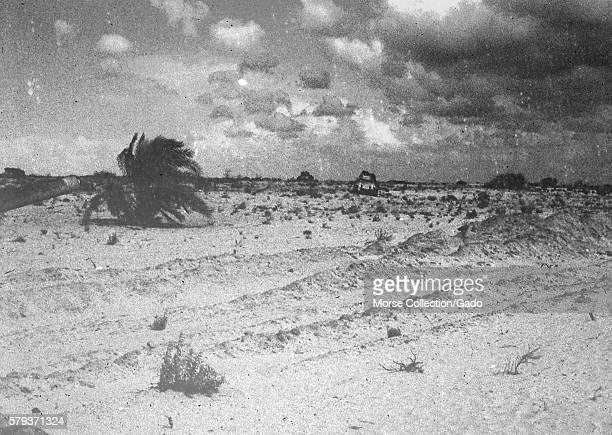 Desolate landscape scene showing war debris and the desert brush surrounding the town of El Arish in the northern Sinai peninsula in Gaza Israel...