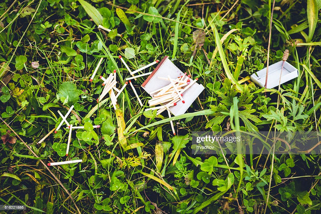 Destroyed box of matches on the green grass. : Stock Photo