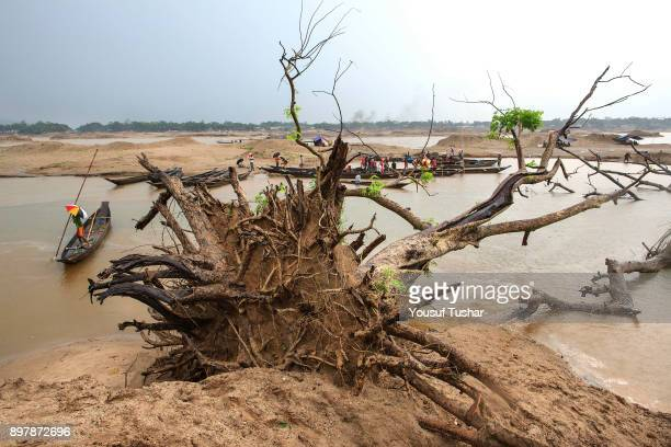 Destroyed tree at the Jaflong stone quarry field The crystal clear water of the Piyain River which flows from India through Bangladesh is dying a...