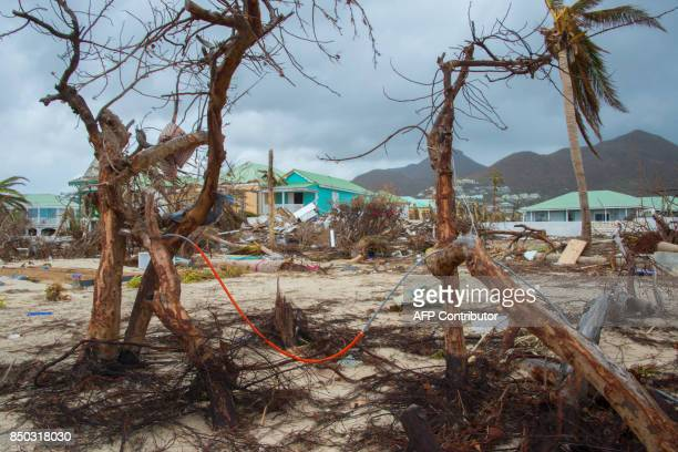 Destroyed trees and houses are seen after the passage of hurricane Irma and Maria in Orient Bay, St. Martin, on September 20, 2017. After killing at...