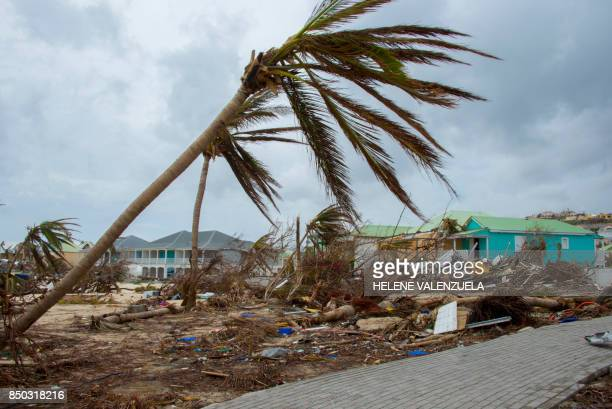 TOPSHOT Destroyed trees and houses are seen after the passage of hurricane Irma and Maria in Orient Bay St Martin on September 20 2017 After killing...