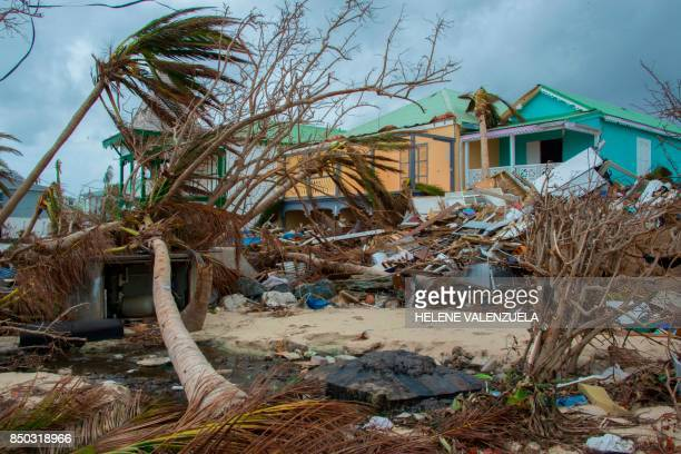 Destroyed trees and houses are seen after the passage of hurricane Irma and Maria in Orient Bay St Martin on September 20 2017 After killing at least...