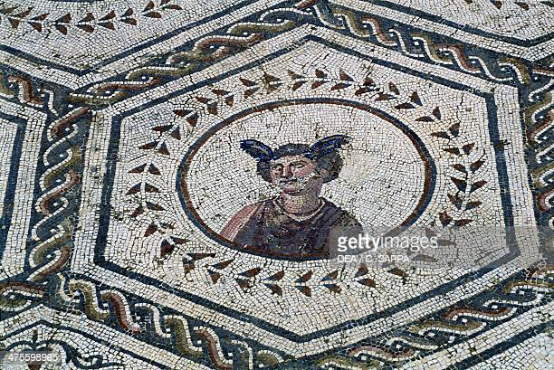 60 Top Roman Mythology Pictures, Photos, & Images - Getty Images