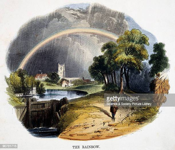 Detail from an engraving by Josiah Wood Whymper from 'Phenomena of Nature' published in London in 1849 for the Society for Promoting Christian...