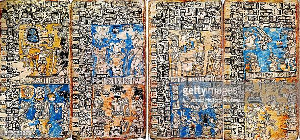 Detail from the Madrid Codex a collection of preColumbian Maya books dating to the Post classic Period of Mesoamerican chronology Dated 15th Century