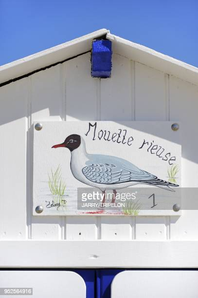 Detail of a beach hut at Le Crotoy Baie de Somme and Cote d'Opale area Somme department Picardie region France