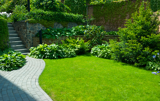 Detail of a botanical garden 1129387572