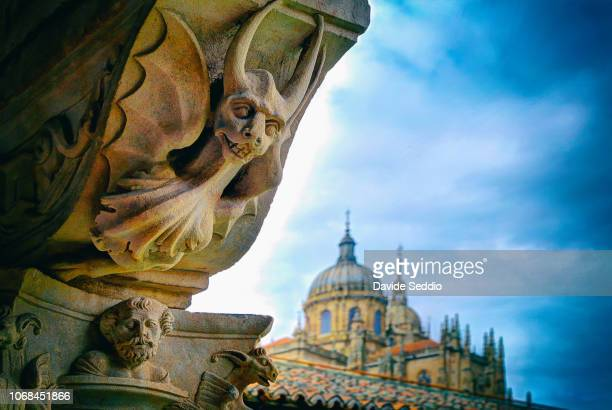 detail of a capital in the cloister of the dominican convent 'convento de las duenas' - salamanca stock pictures, royalty-free photos & images