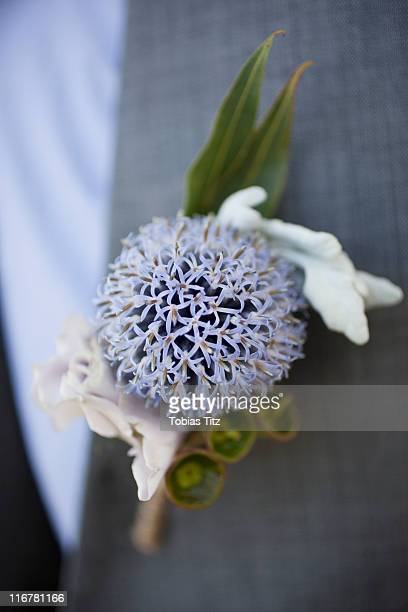 detail of a corsage on the lapel of a man - lapel stock pictures, royalty-free photos & images