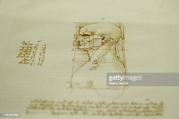 Detail of a drawing on display in the 'Leonardo da Vinci L'Uomo Universale' exhibition during the press preview at Gallerie dell'Accademia on August...