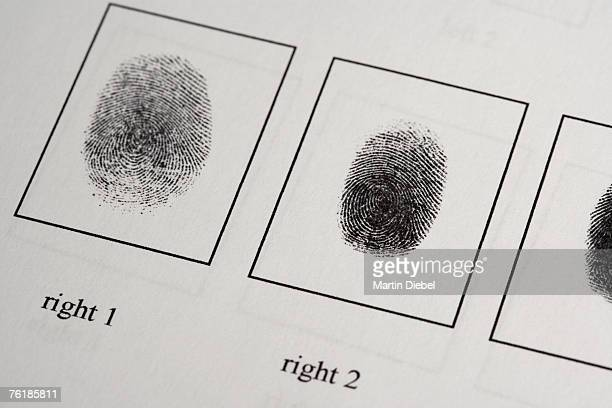 Detail of a fingerprint document