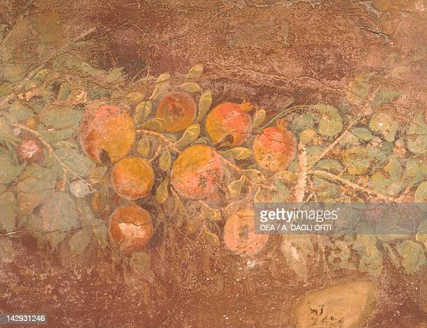 Detail of a fresco with decoration of flowers and fruit from the Roman Villa of Boscoreale Roman Civilization 1st Century Naples Museo Archeologico...