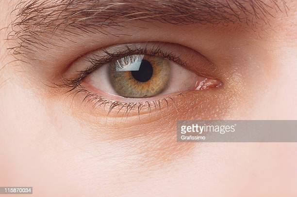 Detail of a human eye