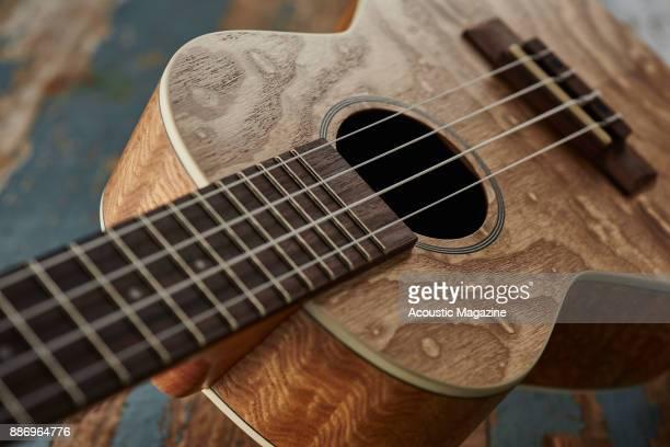 Detail of a Kahua KA24TA ukulele taken on March 1 2017