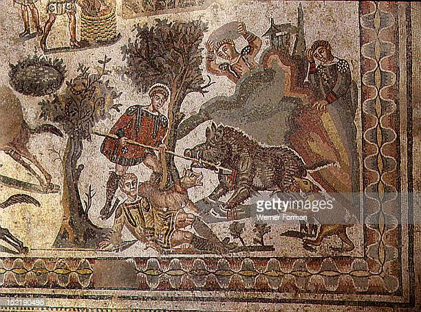 Detail of a mosaic pavement showing a hunting scene A man wearing red tunic spears the wild boar protecting thus the injured man on the ground From...