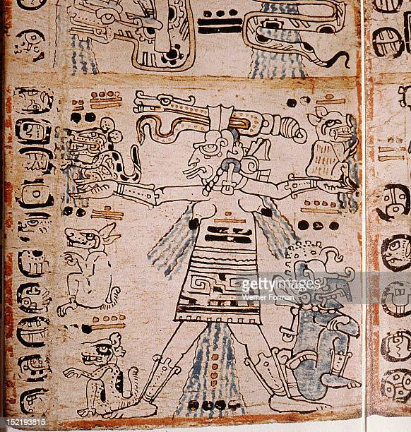 Detail of a page from the codex Troana Cortesianus also know as the Madrid Codex One of only four surviving Mayan codices it is composed entirely of...