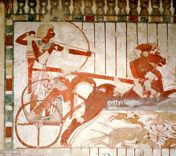 A detail of a painting in the tomb of Userhet Royal Scribe of Amenophis II With a bow and arrow Userhet hunts gazelles and other desert animals from...