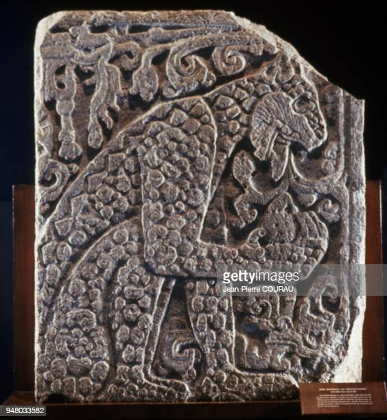 Detail of a raised engraving depicting a jaguar eating a human heart who was located on the eagles and jagaurs' platform Preserved at Mexico's...