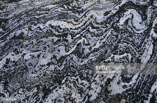 Detail of a rock in Ilimanaq Greenland
