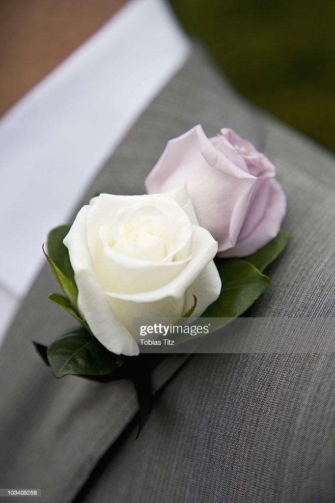 Detail Of A Rose Boutonniere On A Jacket Lapel : Stock Photo
