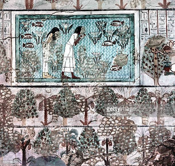A detail of a tomb wall painting showing a garden and ornamental pool with fish Egypt Ancient Egyptian Middle Kingdom