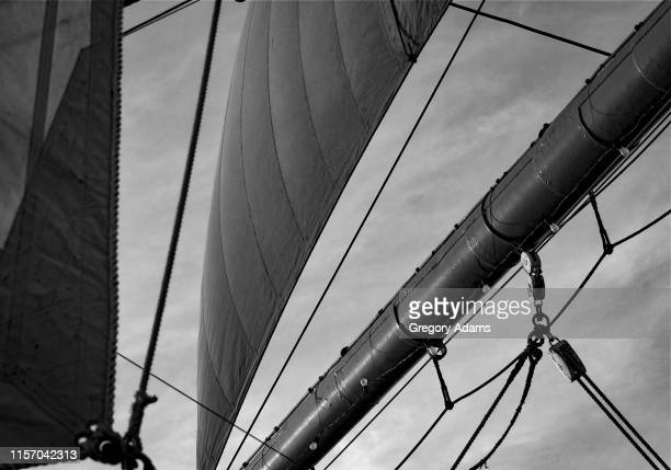 detail of an old tall ship's sails - voilier noir et blanc photos et images de collection