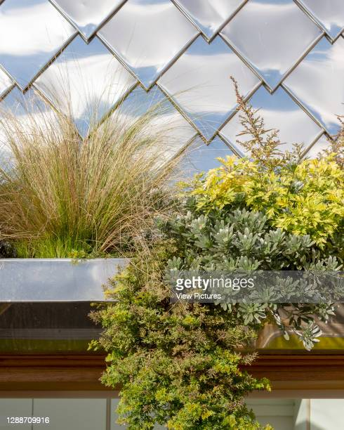 Detail of bespoke planters and steel shingles on roof terrace. STEM lab at Torriano Primary School, London, United Kingdom. Architect: Hayhurst and...