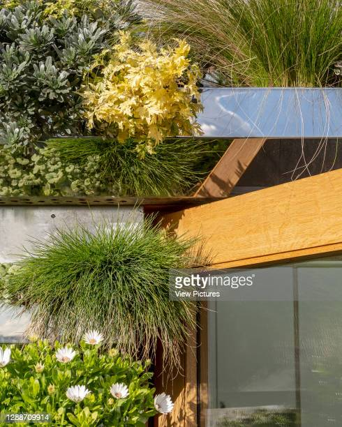 Detail of bespoke planters on roof terrace. STEM lab at Torriano Primary School, London, United Kingdom. Architect: Hayhurst and Co., 2019.