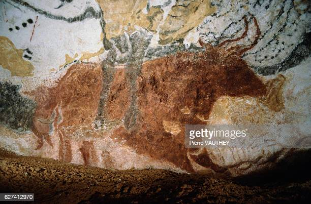 Detail of Bison from Paleolithic Mural Painting Series in Lascaux II
