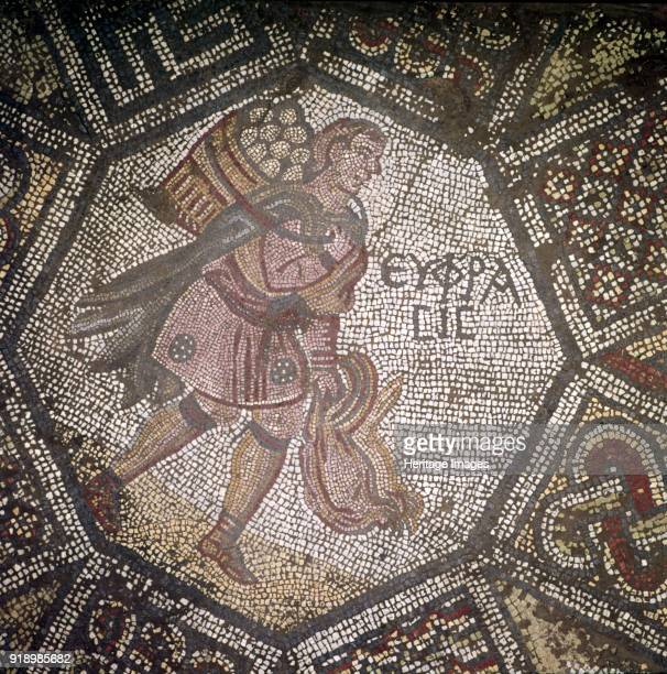 Detail of Byzantine Floor Mosaic at Great Palace, Istanbul, Reign of Justin, 565-575. Artist Unknown.