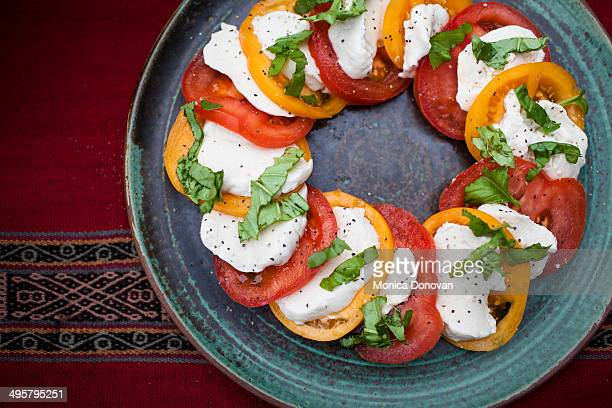 Detail of caprese salad on table cloth