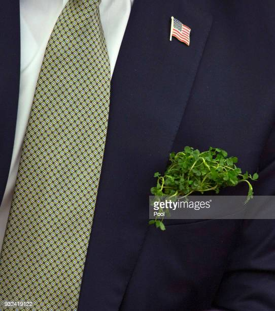 Detail of clovers in the pocket of US President Donald J Trump as he meets with Taoiseach Leo Varadkar of Ireland at The White House March 15 2018 in...