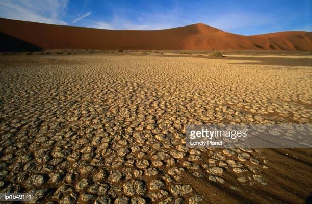 detail of hidden vlei, namib desert park, namibia - erongo stock photos and pictures